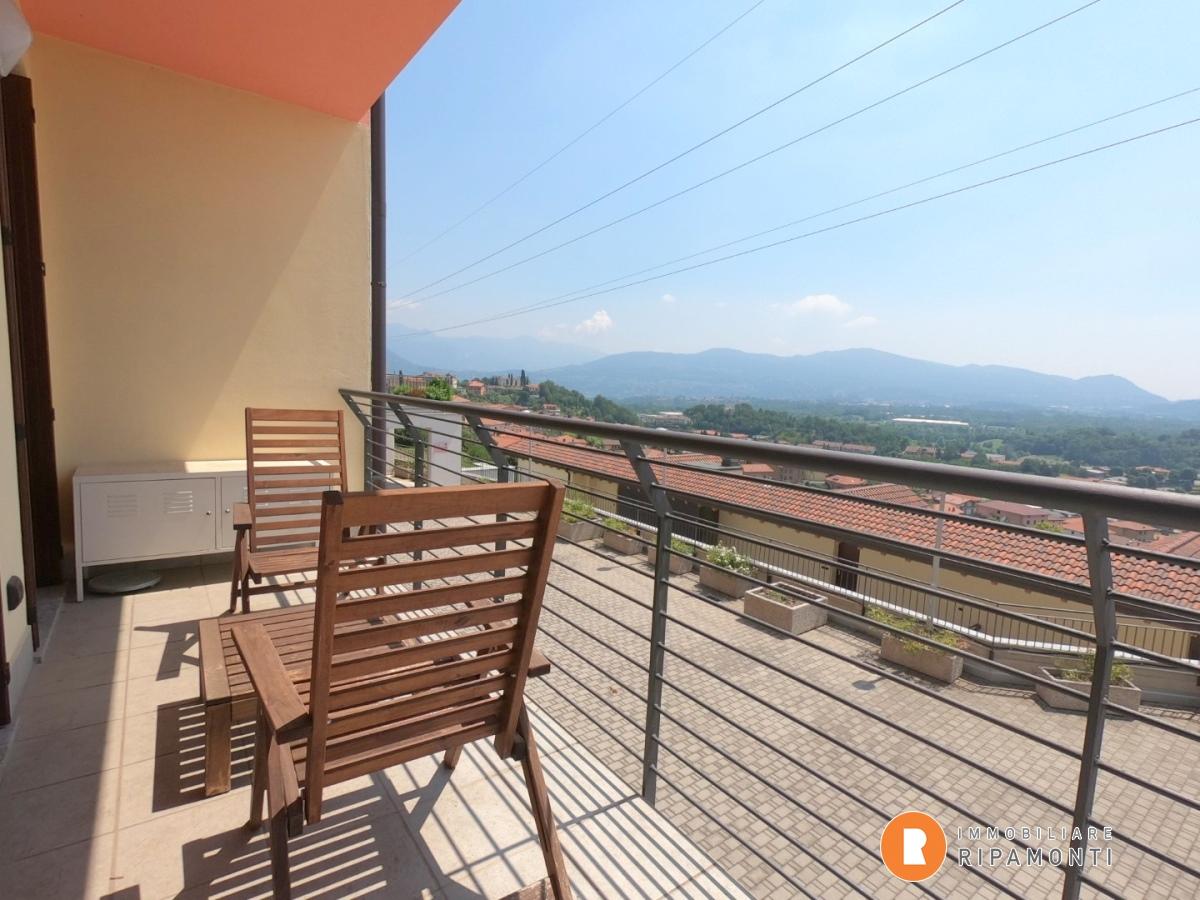 Vendita Bilocale Appartamento Cesana Brianza  266279